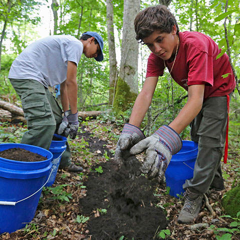 Image of 2 young boys planting trees