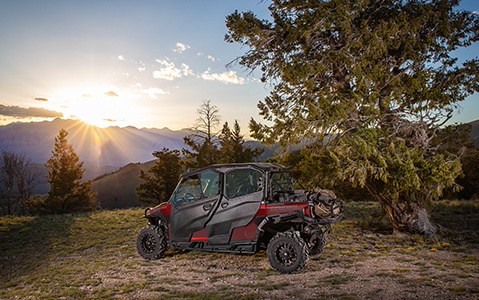 A Polaris General 4 1000 next to a tree in the sunset