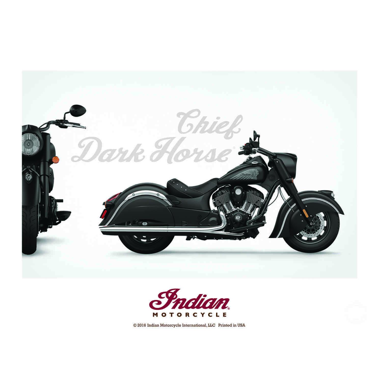 Chief Dark Horse® Full-Color Print Poster