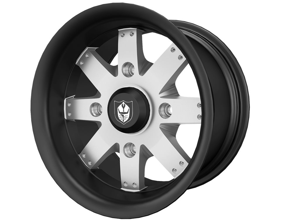 Pro Armor® Amplify Wheel, Accent Rear R14