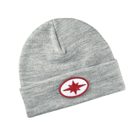 Men's Ellipse Beanie with Polaris® Patch, Gray