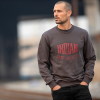 Men's Pull-Over Sweatshirt with Shield Logo, Gray - Image 3 of 4