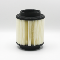 Polaris Engineered Air Filter - 1253355