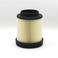 Polaris Engineered Air Filter - 1253372