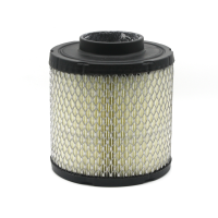 Air Filter, Genuine OEM Part 7082037, Qty 1