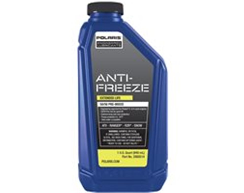 Antifreeze, 1 Qt.