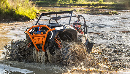RZR special editions power image
