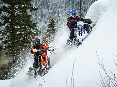 2020 Timbersled ARO 137 LE Snow Bike Conversion System